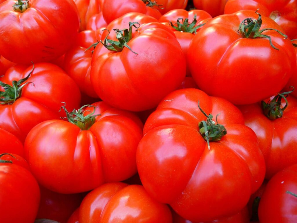 how to keep for fresh tomatoes